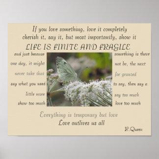 Poster La vie est affiche finie et fragile