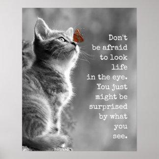 Poster La vie mignonne de regard de Kitty dans la