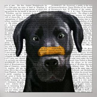 Poster Labrador noir avec l'os sur le nez