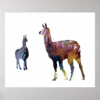 Poster Lamas
