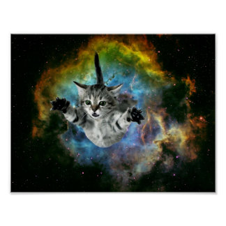 Poster Lancement de chaton d'univers de chat de galaxie