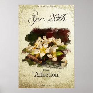 """Poster L'anniversaire fleurit le 20 avril la """"poire """""""