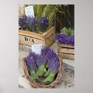 Poster Lavendar à vendre, Provence, France