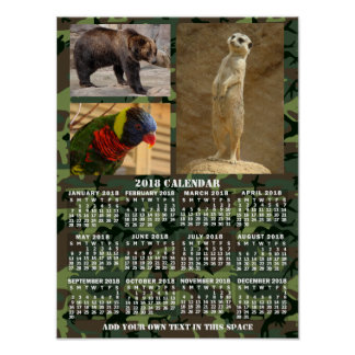 Poster Le camouflage mensuel de calendrier de 2018 ans