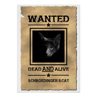 Poster Le chat de Schroedinger a voulu la plaisanterie de