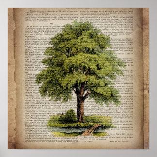 Poster Le dictionnaire du jour de la terre ECO imprime le