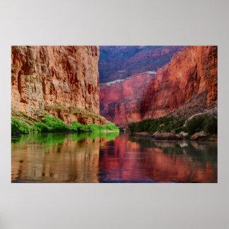Poster Le fleuve Colorado en canyon grand, AZ