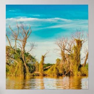 Poster Le fleuve Parana, San Nicolas, Argentine