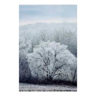 Poster Le paysage brumeux d'hiver avec la neige a couvert