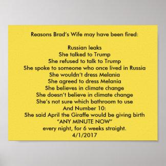 Poster L'épouse de Brad