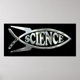Poster Les études spatiales évoluent des poissons en