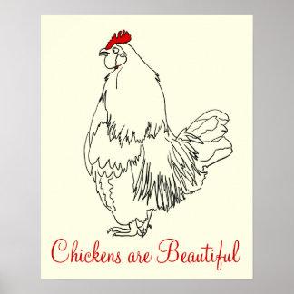 Poster Les poulets sont beau dessin drôle d'art de jeune