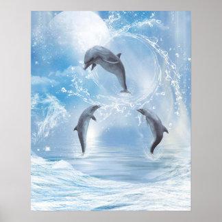 Poster Les rêves des dauphins
