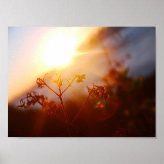 Poster Lever de soleil à une montagne dans l'affiche de