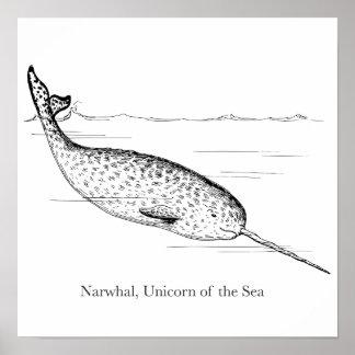 Poster Licorne de baleine de Narwhal de la mer