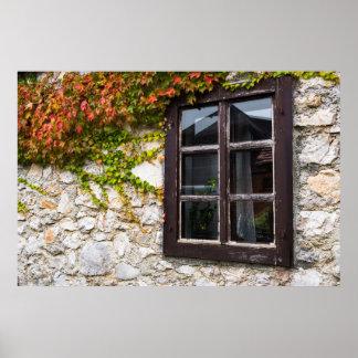 Poster Lierre et fenêtre, Croatie