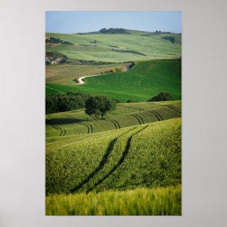 Poster Lignes sinueuses en affiche verte de la Toscane