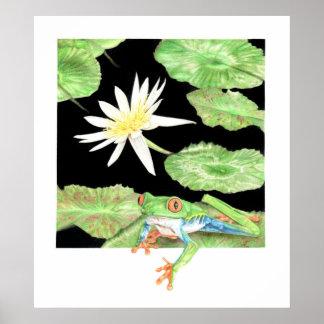 Poster Lis et grenouille