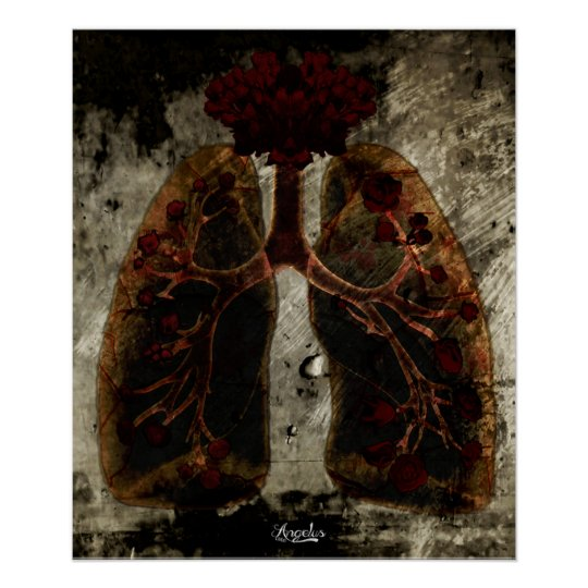 Poster Lung'N'Roses