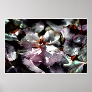 Poster Macro photo artistique, fleurs de cerisier tombées