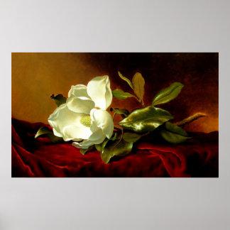 Poster Magnolia sur le velours rouge