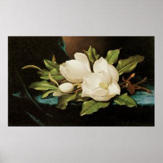 Poster Magnolias géantes sur un tissu bleu de velours par