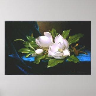 Poster Magnolias sur le velours bleu