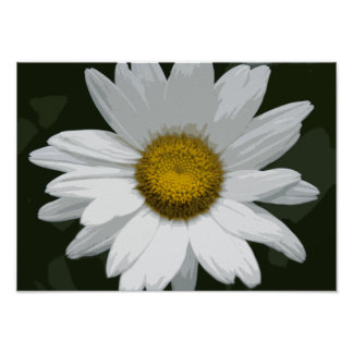 Poster Marguerite blanche simple