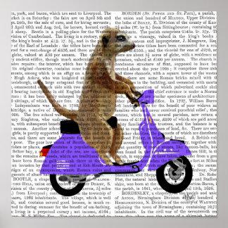Poster Meerkat sur le vélomoteur de lilas