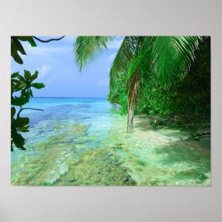 Poster Mer tropicale peu profonde