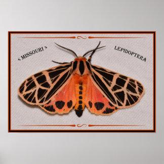 Poster Mite de tigre du Missouri