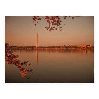 Poster Monument de Washington Sakura au coucher du soleil