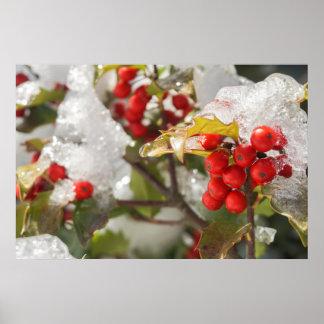 Poster Neige de baies de houx et photo rouges de glace