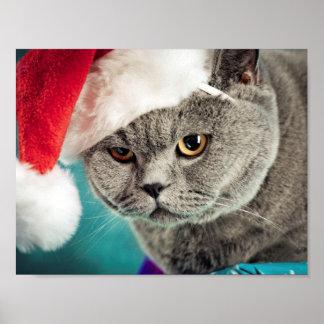 Poster Noël gris de chat - chat de Noël - chat de chaton