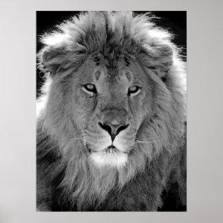 Poster Noir et blanc de motivation de lion de direction