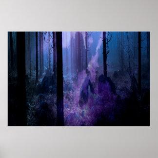 Poster Nuit mystique