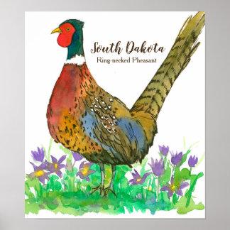 Poster Oiseau d'état de faisan Anneau-Étranglé du Dakota