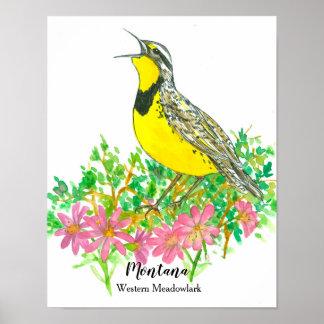 Poster Oiseau d'état de fleur de Bitterroot du Montana