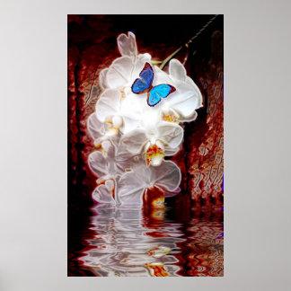 Poster Orchidées et copie de Butterflys