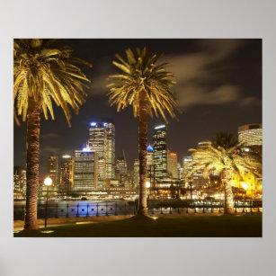 Poster Palmiers et CBD la nuit, Sydney, nouveau sud