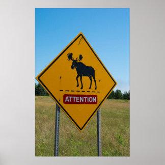 Poster Panneau d'avertissement d'orignaux