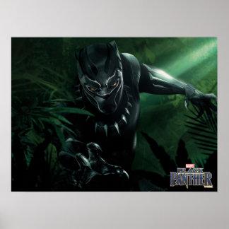Poster Panthère noire | dans la jungle