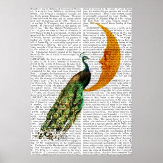 Poster Paon sur la lune