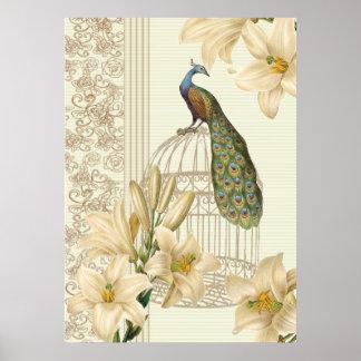 Poster paon vintage de cage à oiseaux de lis français de