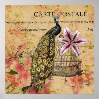 Poster paon vintage moderne de lis botanique français