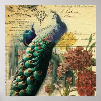 Poster paon vintage moderne de pays français floral de