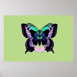 Poster Papillons posés