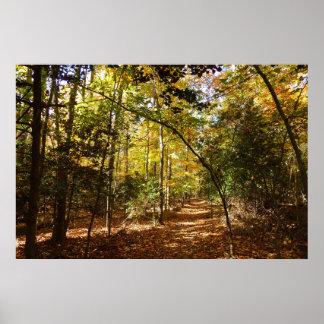 Poster Parc de Greenbelt dans la scène de nature de