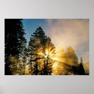 Poster Parc national de la rivière | Yellowstone de