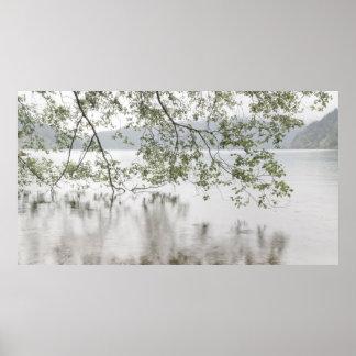 Poster Parc national olympique du croissant | de lac, WA